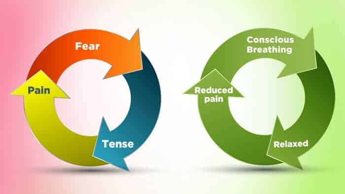 Image result for fear tension pain cycle