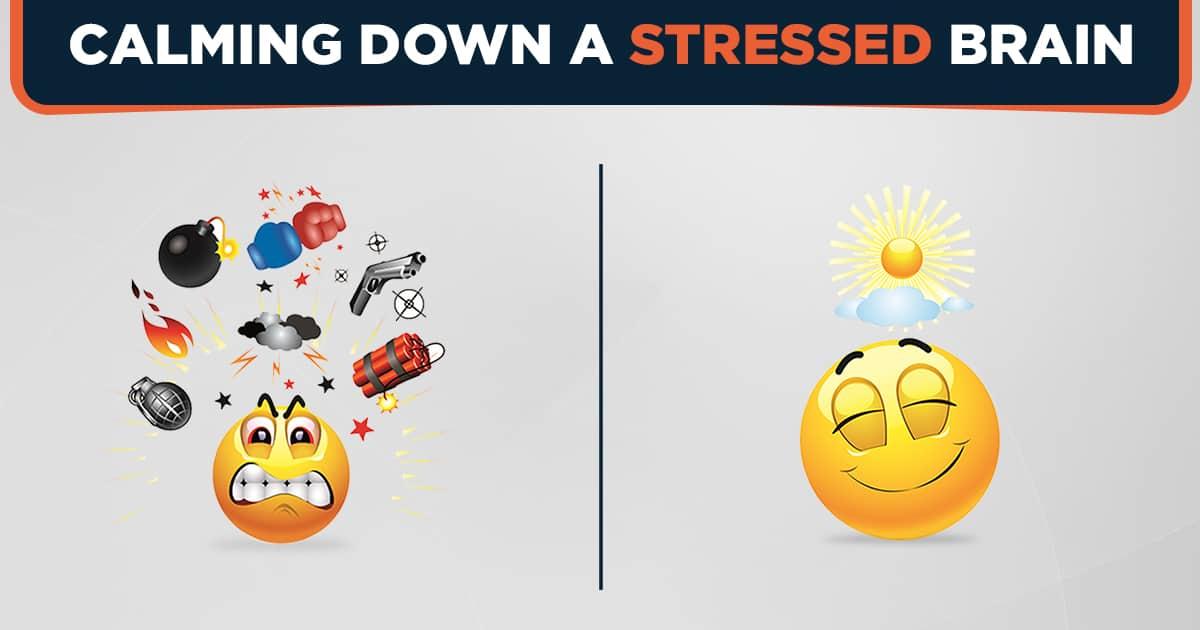 Calming down a stressed brain