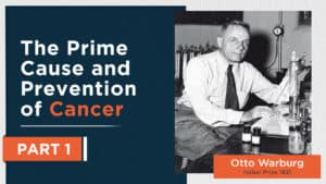 The Prime Cause and Prevention of Cancer